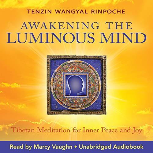 Luminous Mind audiobook